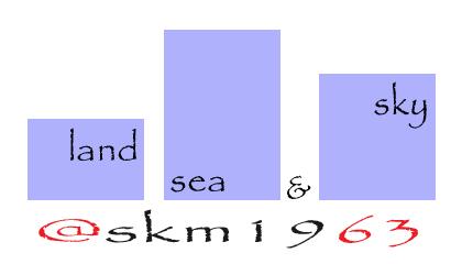 @skm1963 Logo