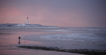 Pink Light on the Bay