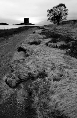Castle Stalker – in the Gaelic, Stalcaire, meaning Hunter or Falconer – is believed originally to have been the site of a Fortalice (a small fortified building) belonging to the MacDougalls when they were Lords of Lorn, and built around 1320. I attained my 200th follower today - thanks every one