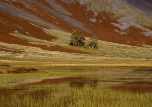 You will have gathered I am messing around with subtle hues and textures currently. This is a retake of an long lens landscape in Glencoe. On this occasion as well as the contrast with the dead ferns (rusty colour) I have captured the reflection in the Lochan too - not a brilliant image but interesting