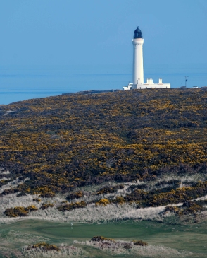 The classic Scottish Golf tease it could be Turnberry to the uninitiated it is in fact a small 9 hole course called Covesea after the lighthouse in the early Spring not that long now the yellow sea of gorse comes alive and we know we are emerging from winters grip.