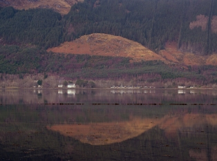 Well I though I would demonstarte the diversity of textures in the scottish landscape - even on adrich day contrasts can be found - less than 300 meters from my misty Loch Duich was this stark contrast - by avoiding the mist and dricht using along lens to isolate the reflection - I ended up with this. I was drawn to the circular shape and the title fell from that - enjoy